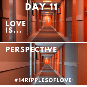 Day 11 Perspective
